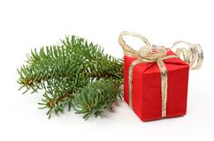 Tree branch and red gift box Royalty Free Stock Photos
