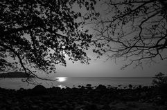 Tree branch, rock and sea on sunrise at hin ngam beach, black an Royalty Free Stock Photo