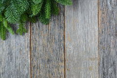 Tree branch on rustic wooden background Royalty Free Stock Photography