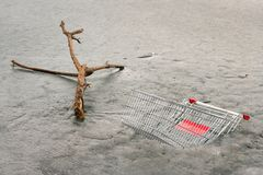 Tree branch and shopping cart in frozen water. Neue Donau Vienna Austria Stock Photography