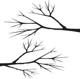 Tree branch silhouette vector Royalty Free Stock Photos