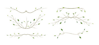 Tree branch twig designer art different foliage natural branches, leaves anniversary text page divider elements watercolor style s. Et collection. Vector Royalty Free Stock Photos
