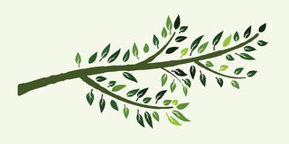 Tree branch vector Stock Photography