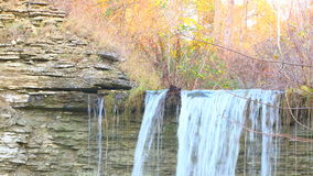Tree branch with an waterfall in the background stock footage
