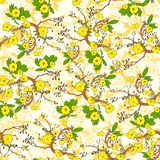 Tree branch with yellow flowers abstract nature Royalty Free Stock Image