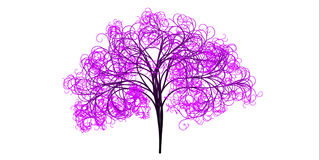 Tree, Branches, Aesthetic, Tribe Royalty Free Stock Photography