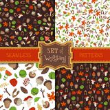 Vector set of seamless forest patterns. Tree branches, autumn leaves and mushrooms, fir-cones and maple seeds, apples and rowan berries, flowers, acorns and Royalty Free Stock Images