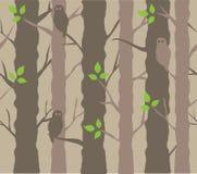Trees Background Stock Photo