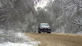 Tree branches bent under the weight of snow and ice over the road.  stock footage