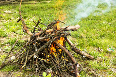 Tree branches burning in spring Stock Photo