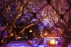 Tree branches covered with bright Christmas lights and snow. Winter city park. Christmas background. Holiday street illumination. Purple and yellow colors stock photos