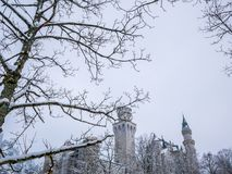 Tree branches in the foreground with neuschwanstein castle winter season snow. royalty free stock images