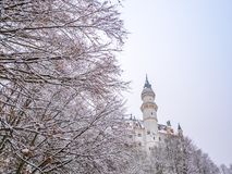 Tree branches in the foreground with neuschwanstein castle winter season snow. stock image