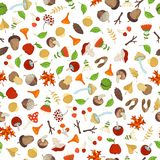 Vector seamless woodland autumn pattern. Tree branches and leaves, edible and poisonous mushrooms, fir-cones and maple seeds, rowan berries and flowers, acorns Royalty Free Stock Images