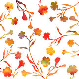 Tree branches with leaves and flowers Royalty Free Stock Image