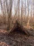 Tree branches made into tent in middle of woodland uk. Essex; england; uk stock photos
