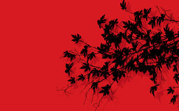 Tree branches over red Stock Photos