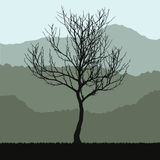 Tree with branches silhouette and green bush vector illustration. Stock Images