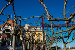 Tree branches at the Solar Plaza. Portugalete, Spain royalty free stock images