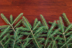Tree branches on a wooden background Royalty Free Stock Image