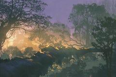 Tree bridge in rain forest,sunrise in woods Stock Photo