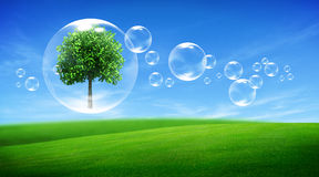 Tree in a bubble Royalty Free Stock Image