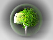Tree in a bubble Stock Image