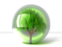 Tree in a bubble Stock Images