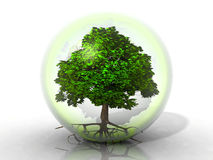 Tree in a bubble Royalty Free Stock Images
