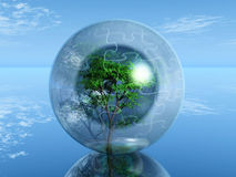 Tree in a bubble Royalty Free Stock Photo
