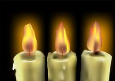 Tree burning candles Stock Image