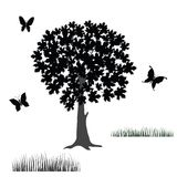 Tree and butterflies Stock Photography