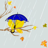 Tree  with butterfly under umbrella Royalty Free Stock Photography