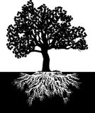 Tree_BW stock illustration