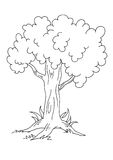 Tree - BW stock illustration