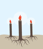Tree candles Royalty Free Stock Images