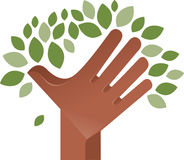 Tree carried by hands Royalty Free Stock Photos