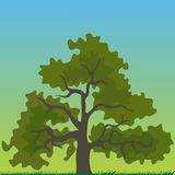Tree cartoon Royalty Free Stock Image