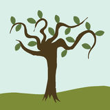 Tree Cartoon Royalty Free Stock Images