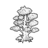 Tree. Cartoon tree vector line art illustration stock illustration