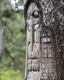 Tree carved by native Tlingit indians. Along a trail on top of Mt. Roberts in Juneau, Alaska, USA stock images