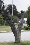 Tree Carving. A Tree Carving of an Otter an Eagle & a Face stock photo