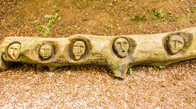 Tree carvings. At Knaesborough, Yorkshire Stock Photography