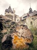Tree with castel in background stock photo