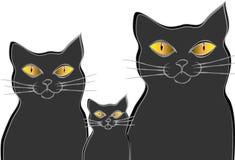 Cat family Royalty Free Stock Photos