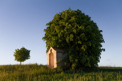 Tree Chapel. Picturesque picture of a Chapel in front of a Tree in Bavaria in the evening sun, Germany Stock Photo