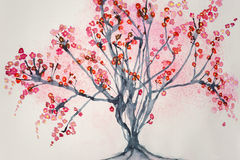 Tree with cherry blossoms. On a white background Stock Image
