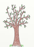 Tree - children drawing. Tree with green leaves  - children drawing Stock Image