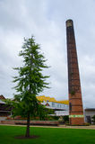 Tree and chimney stack. Tree and smokestack in red bricks Royalty Free Stock Image