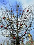Tree with Christmas toys royalty free stock photography